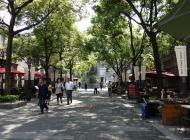 Case Study Shanghai